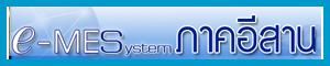 e-mes-system-esarn-link